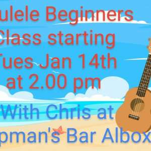 Ukulele beginners classes starting Jan 14 th